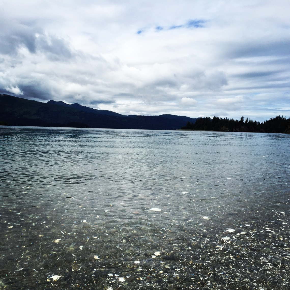Gorgeous Kachemak Bay